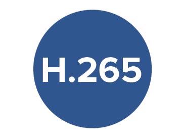 H265-01.jpg